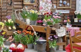 Tulip Farm De Tulperij